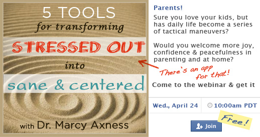 5 Tools for Transforming from Stressed Out into Sane & Centered webinar