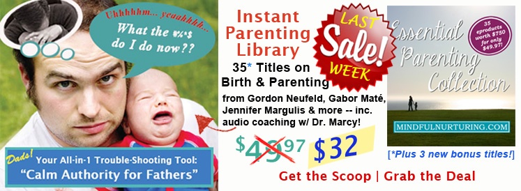 Mindful Parenting eBundle Final Sale