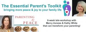 The Essential Parent's Toolkit Tele-Workshop