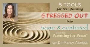 5 Tools for Transforming from Stressed Out to Sane & Centered | Marcy Axness PhD